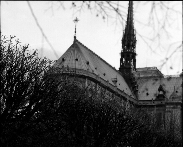 twigs and spires