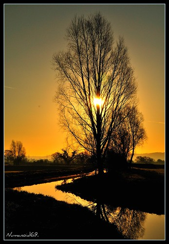uk england reflection water sunrise river landscape dawn gloucestershire rivercam nikond300