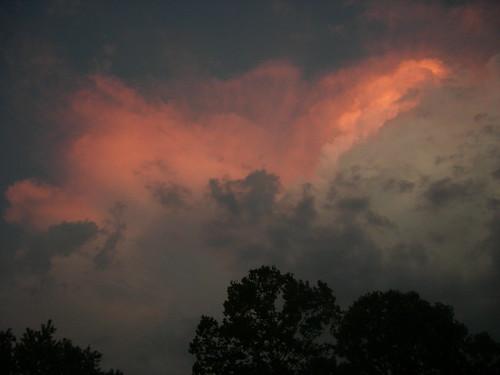 sunset bigbonelick
