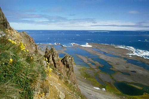 Cape Vera
