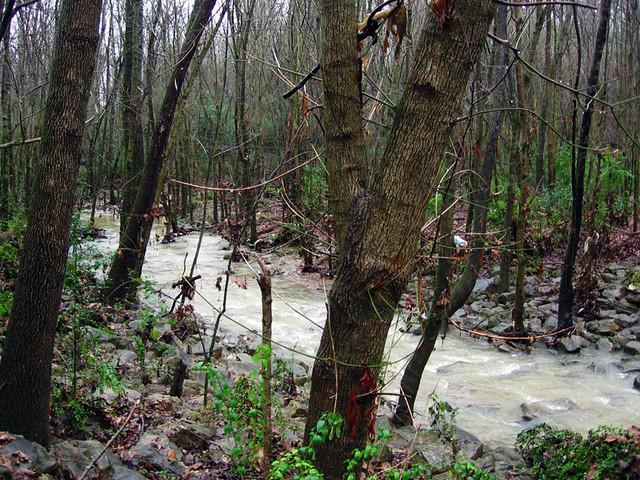 Ensor Sink Park, City Creek, Cookeville, TN