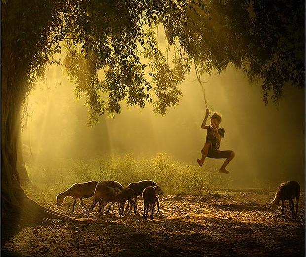 photo by Rarindra prakarsa | thats a beauty from rarindra on… | Flickr