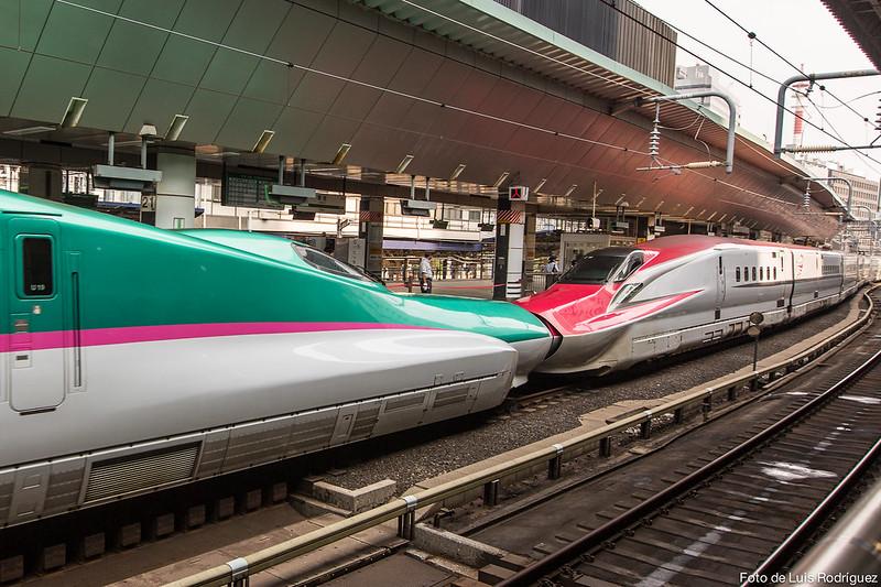 Shinkansen E5 (izquierda) acoplado a un shinkansen E6 en la estación de Tokio