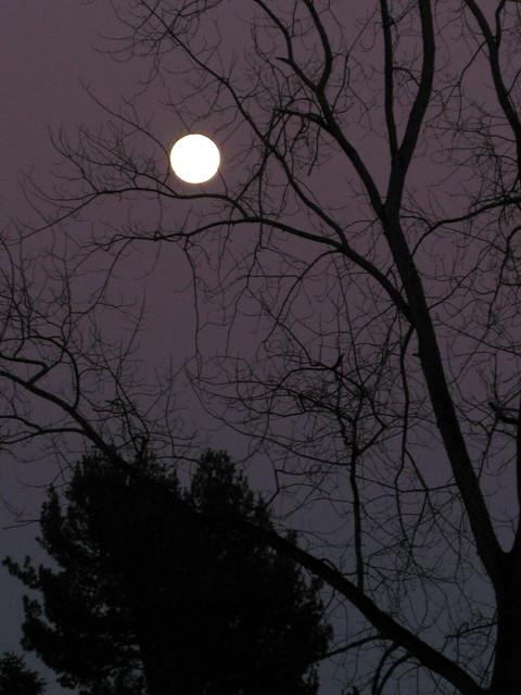 Full Moon 1-08