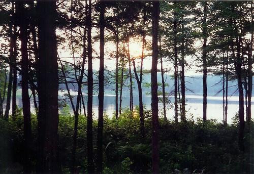 sunset summer lake forest dusk massachussetts dennison