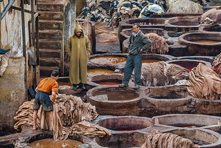 Leather tannery in Fez, Morocco | by Phil Marion (176 million views - THANKS)