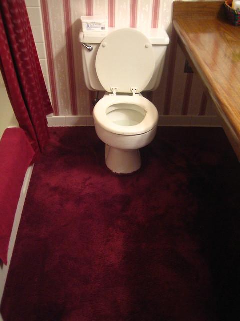 carpet in the bathroom?