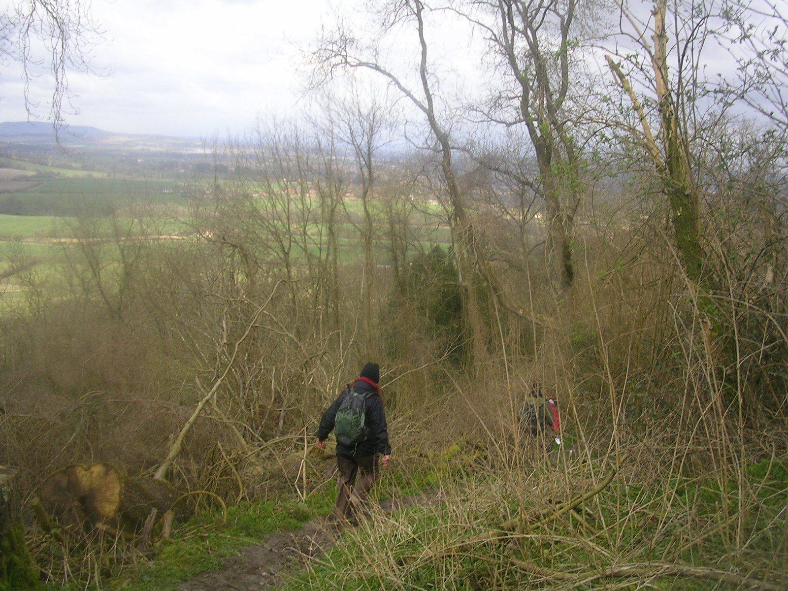 steeply down Amberley to Pulborough