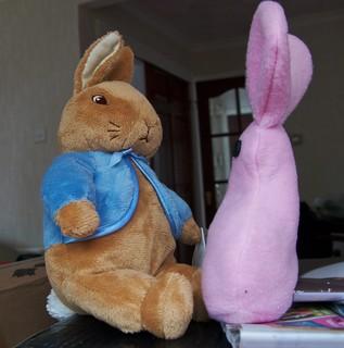 Rabbit Showdown