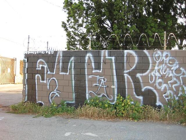 frogtown rifa   guerradetacos   Flickr