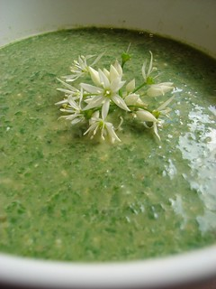 Spinach and Wild Garlic Pesto Soup | by Girl Interrupted Eating