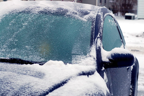Icy Bug | by nataraj_hauser / eyeDance