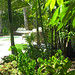 Landscaping Services by Vision Horticulture located in Nokomis, FL