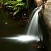 Image: Cedar Creek Waterfall