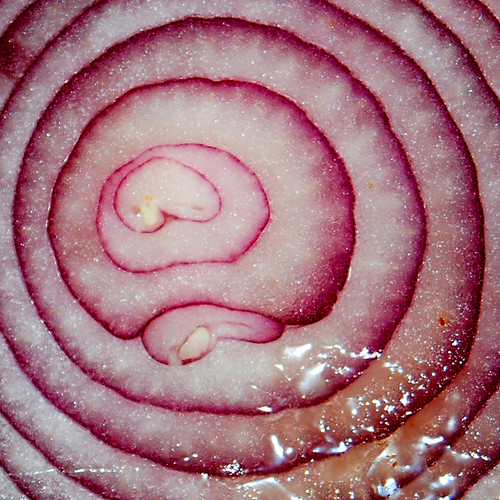 Onion | by John Vetterli