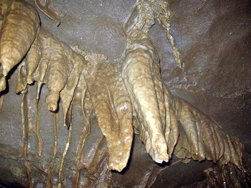 Stalagtites, Capshaw Cave, Cookeville, TN