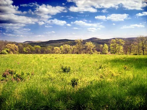Spring | by Nicholas_T