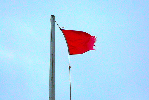 The Red Flag   by Tim Green aka atoach