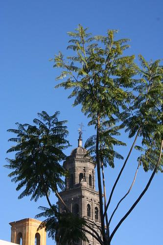 Torre, Puebla