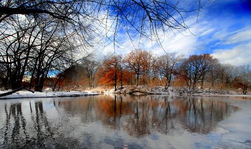 cold ice latefall naturesfinest earlywinter anawesomeshot chicopeeriver lateclingingleaves