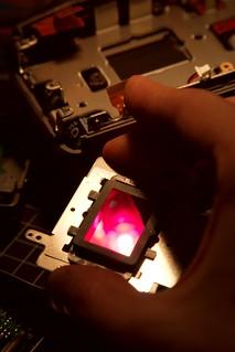 300d infrared conversion | by antonpiatek