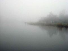 Fog | by doc(q)man