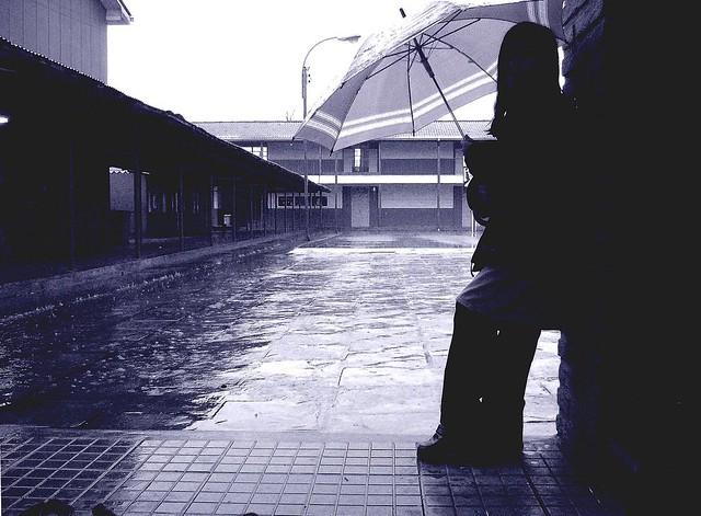 Ale y la lluvia