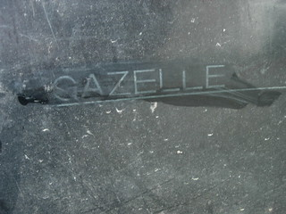 0319 Gazelle Invicta
