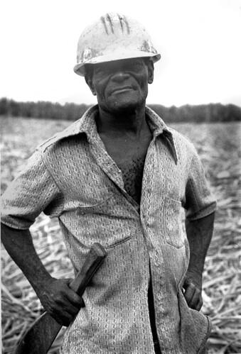 Hatian immigrant worker