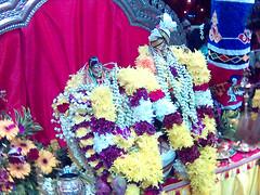 Sri Renganathar and Sri Renganayaki