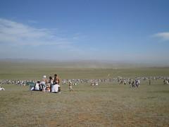 Horse race site.