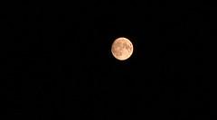 Moon july 19