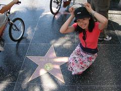 Hollywood Sidewalk Stars - Walt Disney