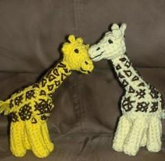 giraffes in love (1)