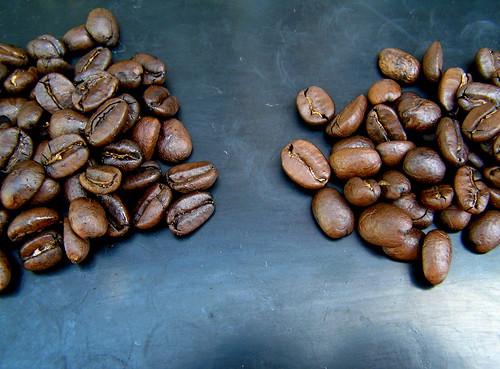 BBCC Hayes Valley Espresso vs. Brandmeester's Koffie Espresso