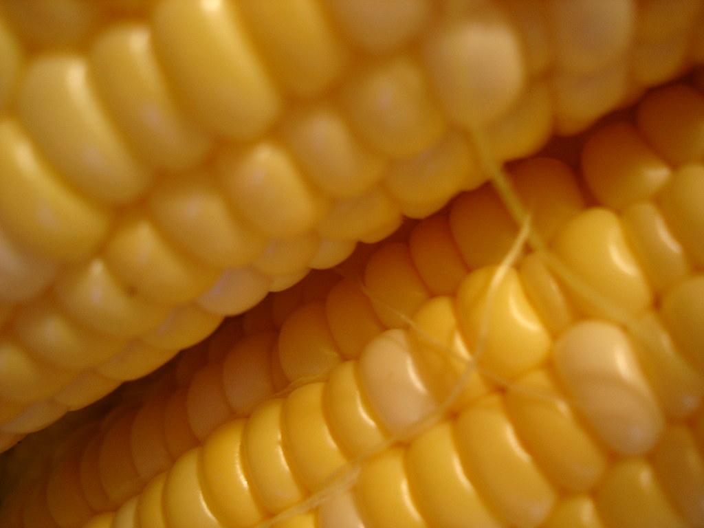 Corn?