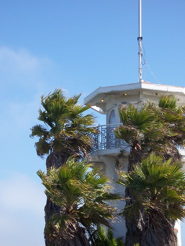 Palm Trees Blowing with Lighthouse