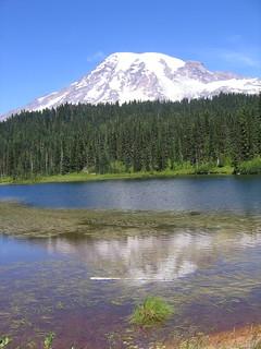 Rainier at Reflection Lake   by mamamusings