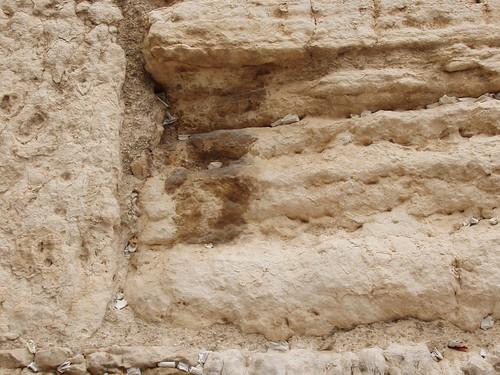 08-09Israel 062
