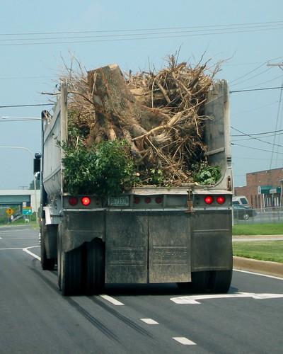 Stump Truck?