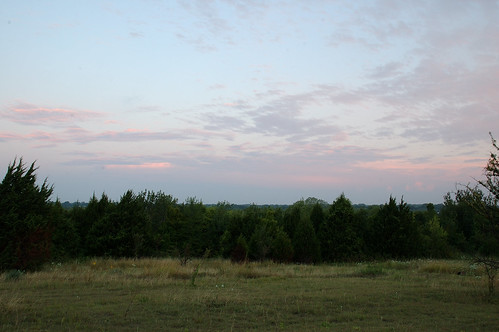 Dexham Prairie