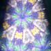 froggy kaleidoscope