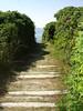 Walkway to Roque's Bluff Beach