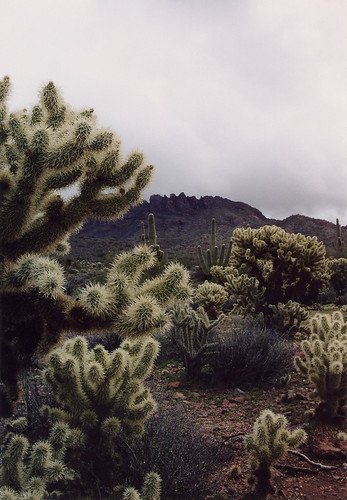 Vulture peak near Wickenburg | by raelb