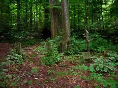Pet Cemetery4