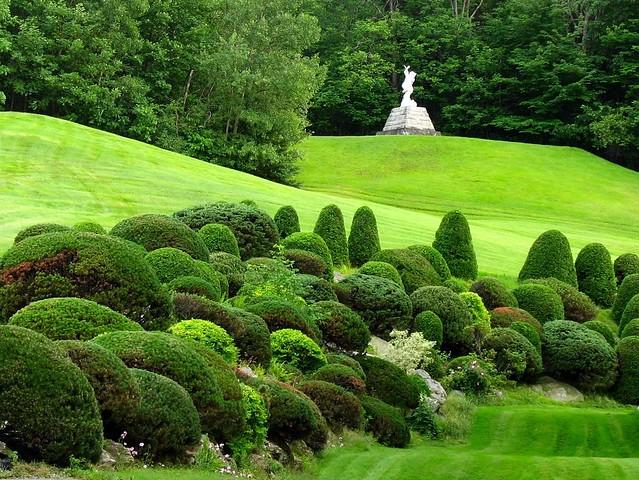 From The Tree Lover Gardener