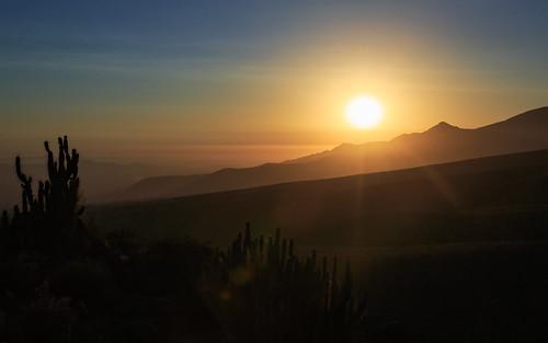 elmisti peru arequipa sunset landscape pe canon5dsr canon cactus evening desert southamerica