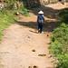 Walking the Elephant Path