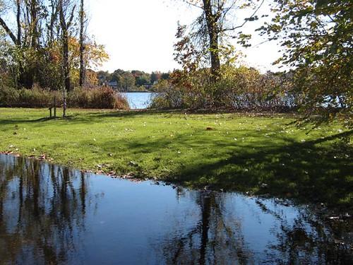 park morning autumn reflection fall rain puddle pond walk massachusetts foliage melrose 1218 morningwalk ellpond rainpuddle