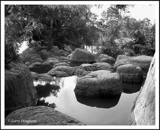 The Rocks of Lafreniere Park
